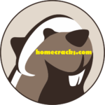 DBeaver 21.0.1 Crack + Activation Key With Patch Download Free Here!